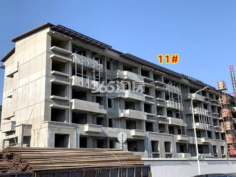 信义山水嘉庭11#楼工程实景(2020.6.30摄)