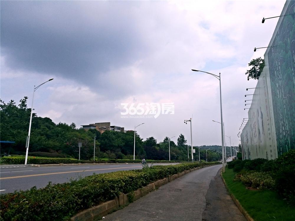明发阅山悦府周边主干道实景图(8.10)