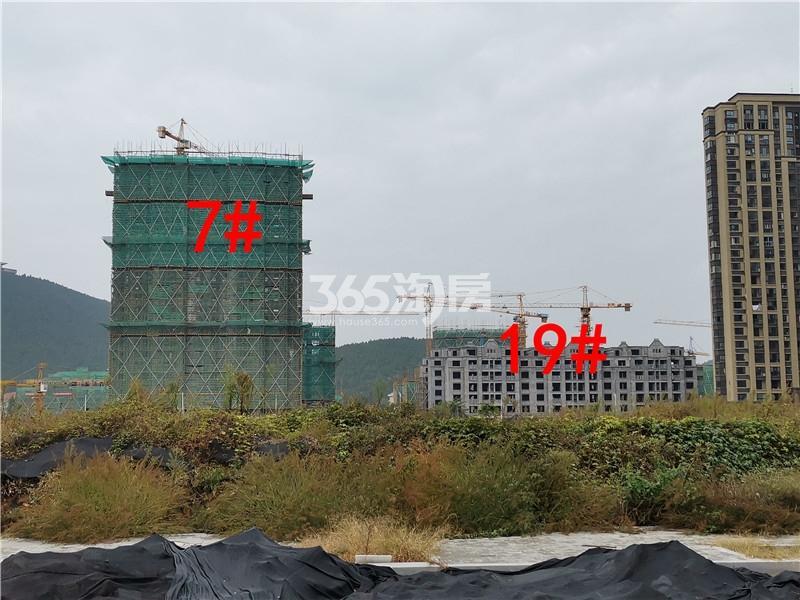 绿地理想城悦湖公馆在建7、19#楼实景图(10.16)