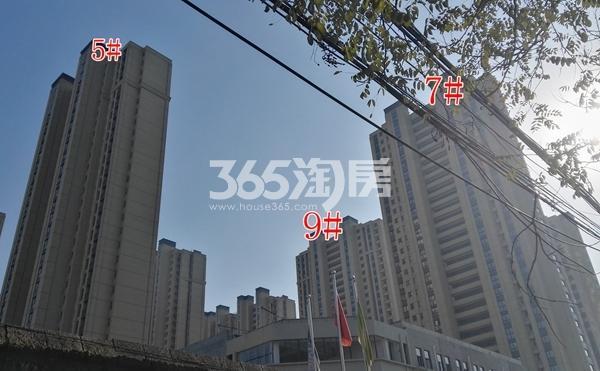 海尔滟澜公馆一期高层5、7、9#楼实景(12.20)