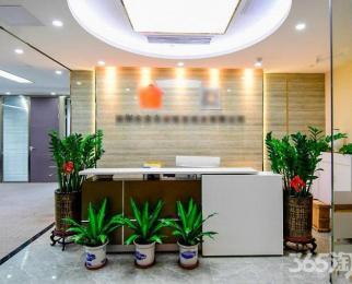 元通地铁口 中国电科国睿大厦 精装甲级落地窗 新地中心金