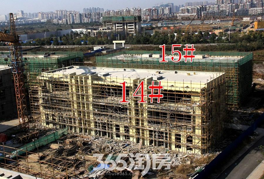 云谷科技园14#15#施工中(2017.11摄)