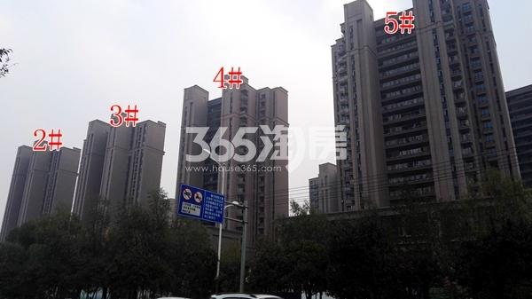 恒大滨河左岸2-5#楼工程实景(11.8)