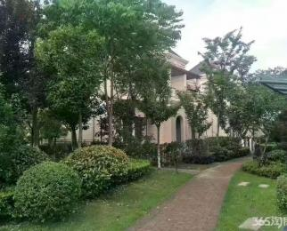 轻轨站点高端别墅 商务中心 银泰城 第一人民医院 自带学区