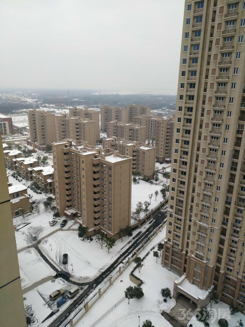 碧桂园欧洲城3室1厅1卫110.86平米2016年产权房精装