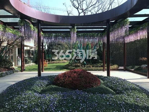 恒大御峰售楼处示范区实景图(2017.12 摄)