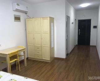 世茂翡翠首府1室1厅1卫46平米整租豪华装