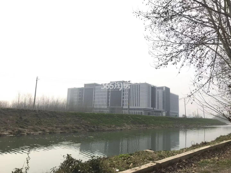 扬子江金茂悦周边配套——知识产权服务大厦(2.27)