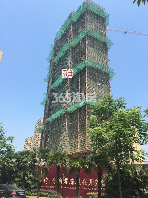 九龙仓碧玺高层5#楼实景图(2018.5 摄)