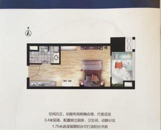 天洋国际公寓 现房销售一实小名校 即买即用 即买即收益可贷