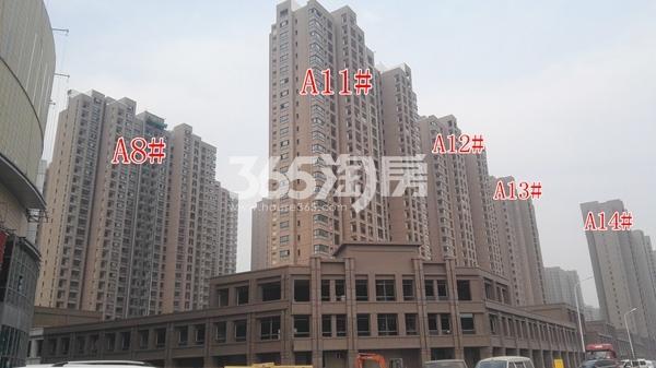 荣盛花语城一期部分高层工程实景图(11.8)