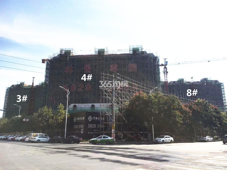 通宇林景尊园3、4、8号楼实景图(10.18)