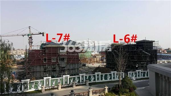 枫林天下康城L-7、8#楼在建实景图(11.14)