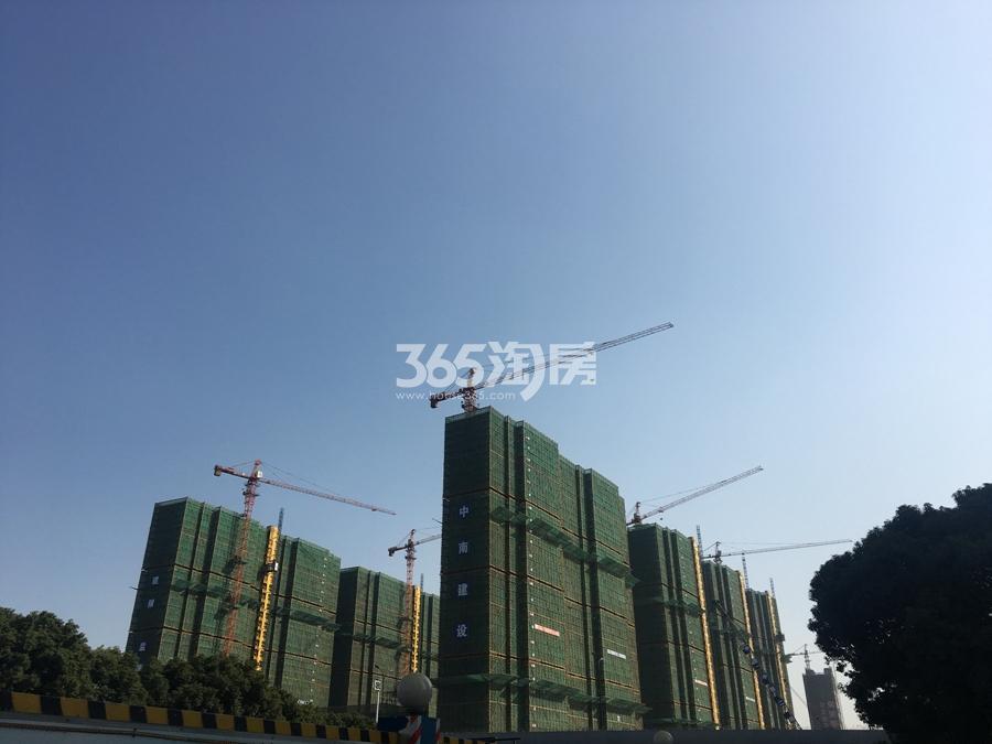 新城香悦公馆西面在建小区实景图 2017年11月摄