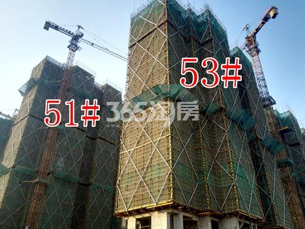 绿地工润和平壹号四期51#、53#工地实景图(11.15)