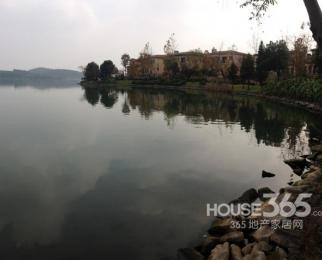 卧龙湖小镇百合花园靠高尔夫球场独栋别墅大院