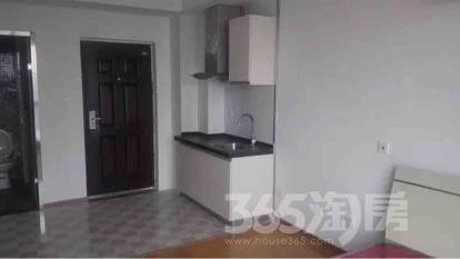 铂悦公寓1室1厅1卫35平米整租精装