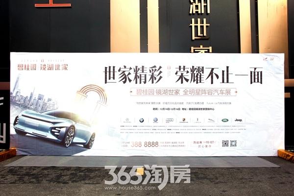 碧桂园镜湖世家汽车展(2018.12摄)