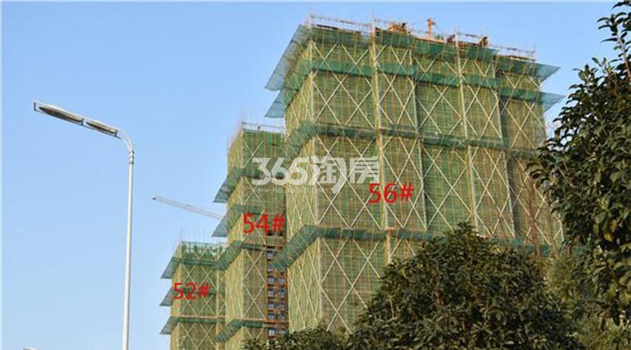 蓝光雍锦半岛施工现场实景图(12.27)