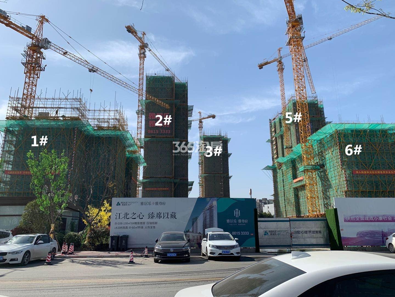 雅居乐雅尊府1、2、3、5、6号楼实景图(3.20)