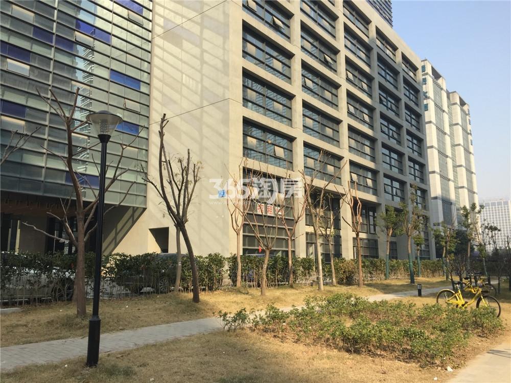 艺树家工场楼下环境实景图(2.22)
