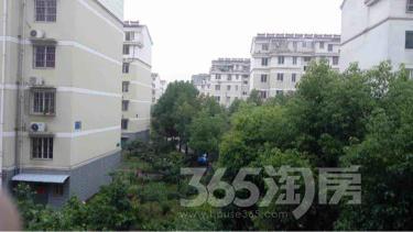 鸿福三村3室2厅1卫113.5平米精装产权房