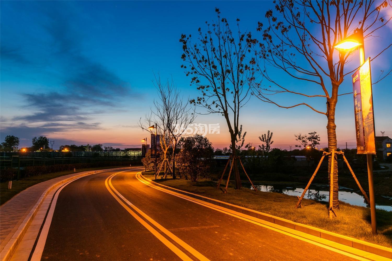 瑞安翠湖山夜景(2.23)