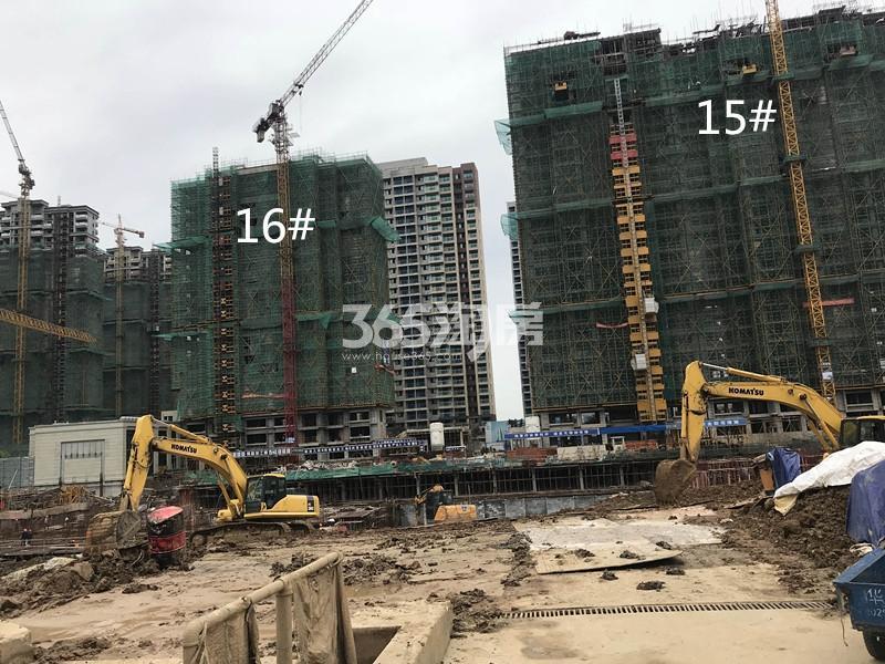 融创玉兰公馆15、16号楼实景图(11.17)