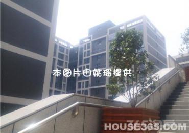 【整租】蓝岸live科技青年街区2室1厅