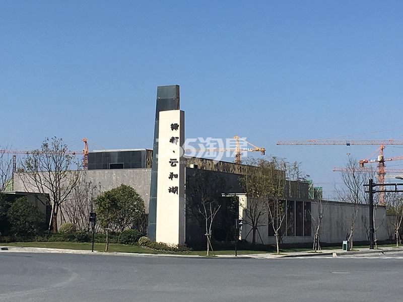绿都云和湖项目售楼处实景图(2018.2)