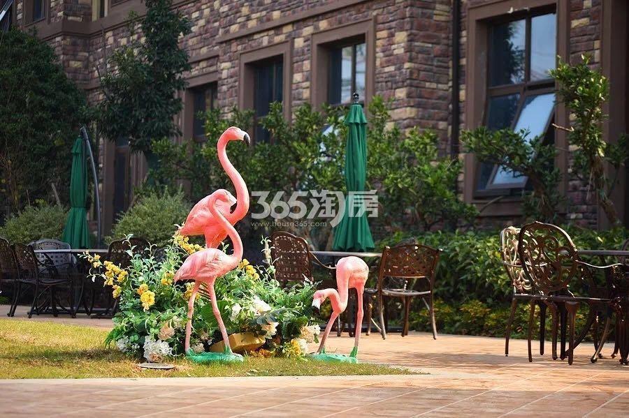 正源尚峰尚水别墅景观实景图(5.24)