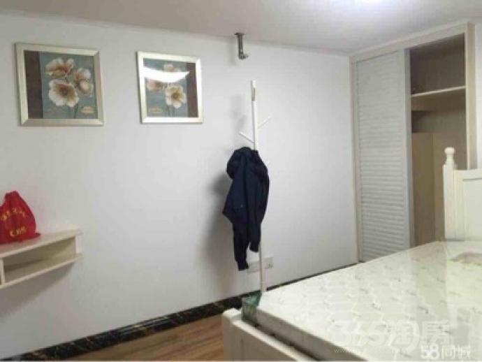 丽晶国际1室1厅1卫50平米合租精装