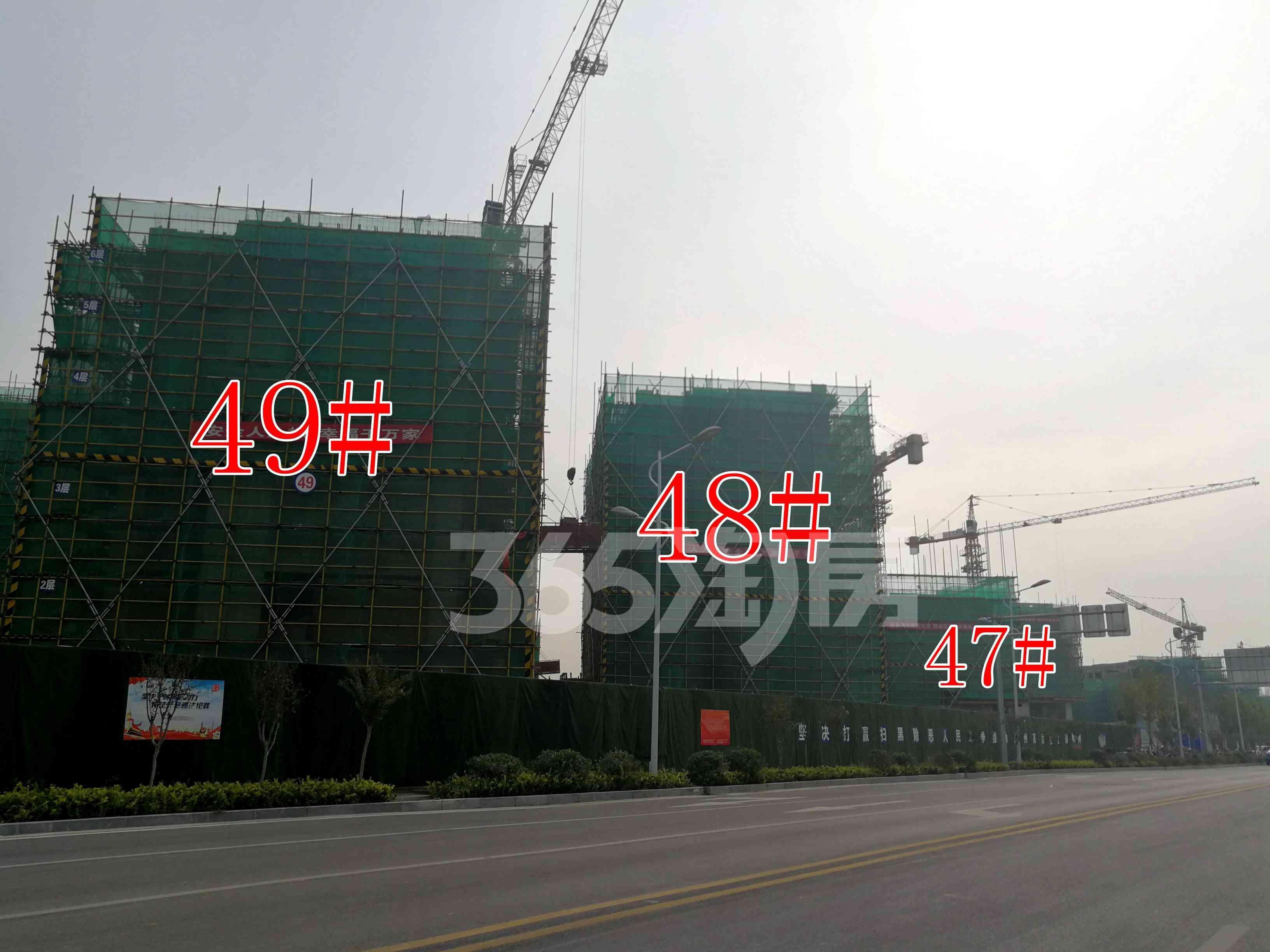 观澜别院47、48、49#工地实景图(9.26)