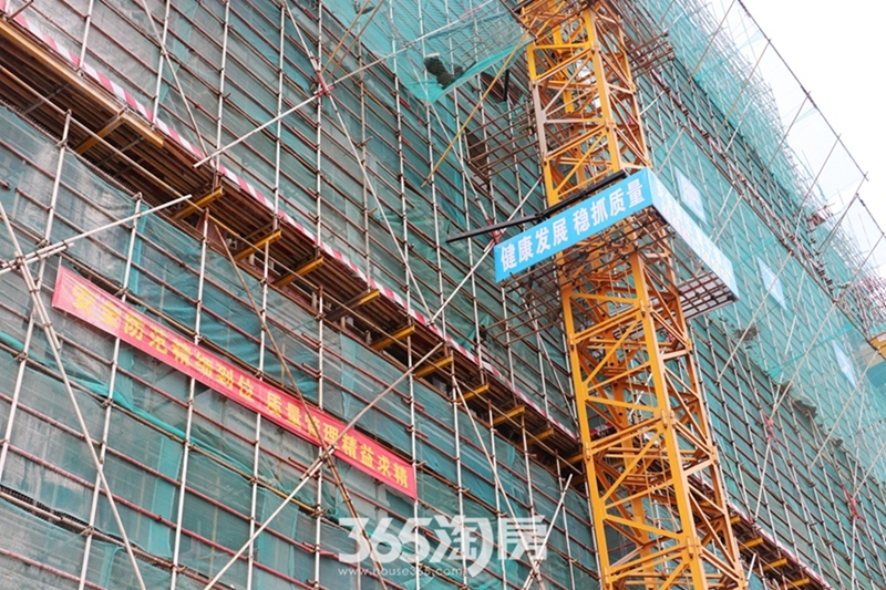 伟星芜湖院子工程进度(2019.3)
