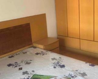 高家村42号3室2厅1卫40平米合租豪华装