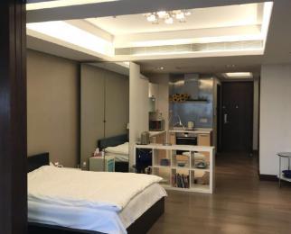 南京国际广场1室1厅1卫290元75平方