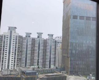 金轮国际广场1室1厅1卫57平米2010年产权房豪华装