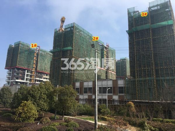 绿地天空树1#、2#、3#楼洋房工程进度实景(2018.2摄)