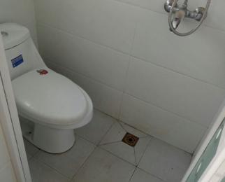 新河七队1室1厅1卫60平米整租豪华装