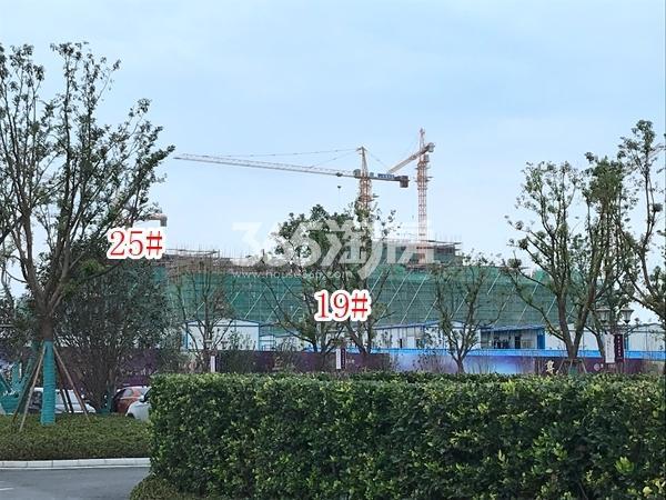 恒大观澜府洋房19#、21#楼施工实景图(2017.11 摄)