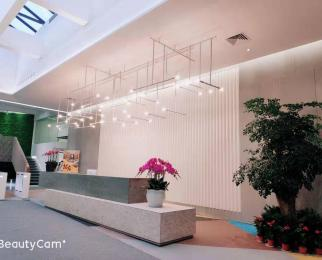 适合设计装饰 摄影 产品展示 网络科技 IT类企业办公自然
