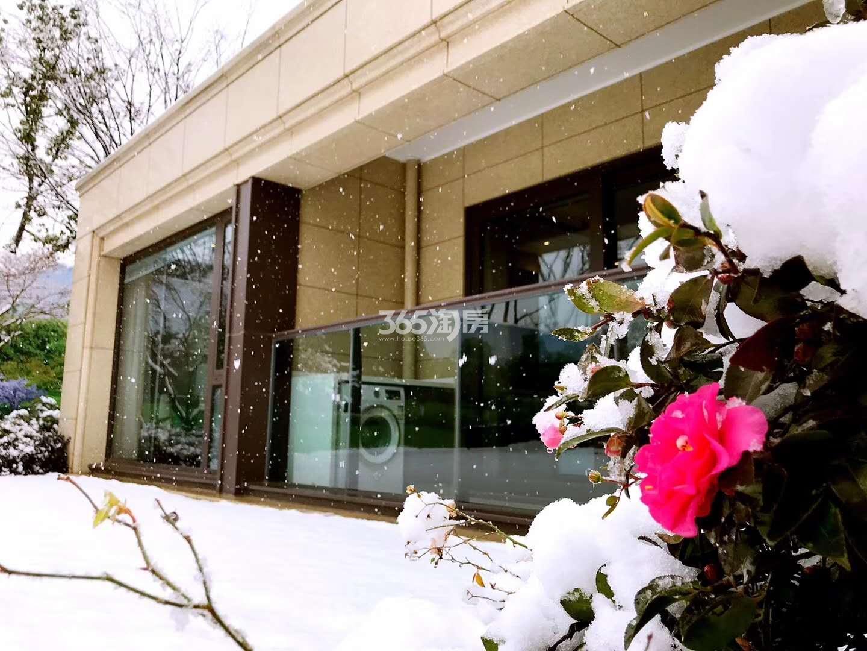 绿城深蓝售楼处雪景图(1.5)