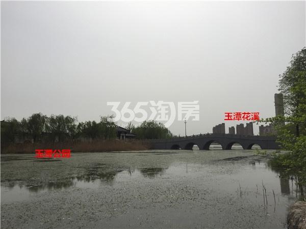 玉潭花溪周边的玉潭湖公园(4.18)