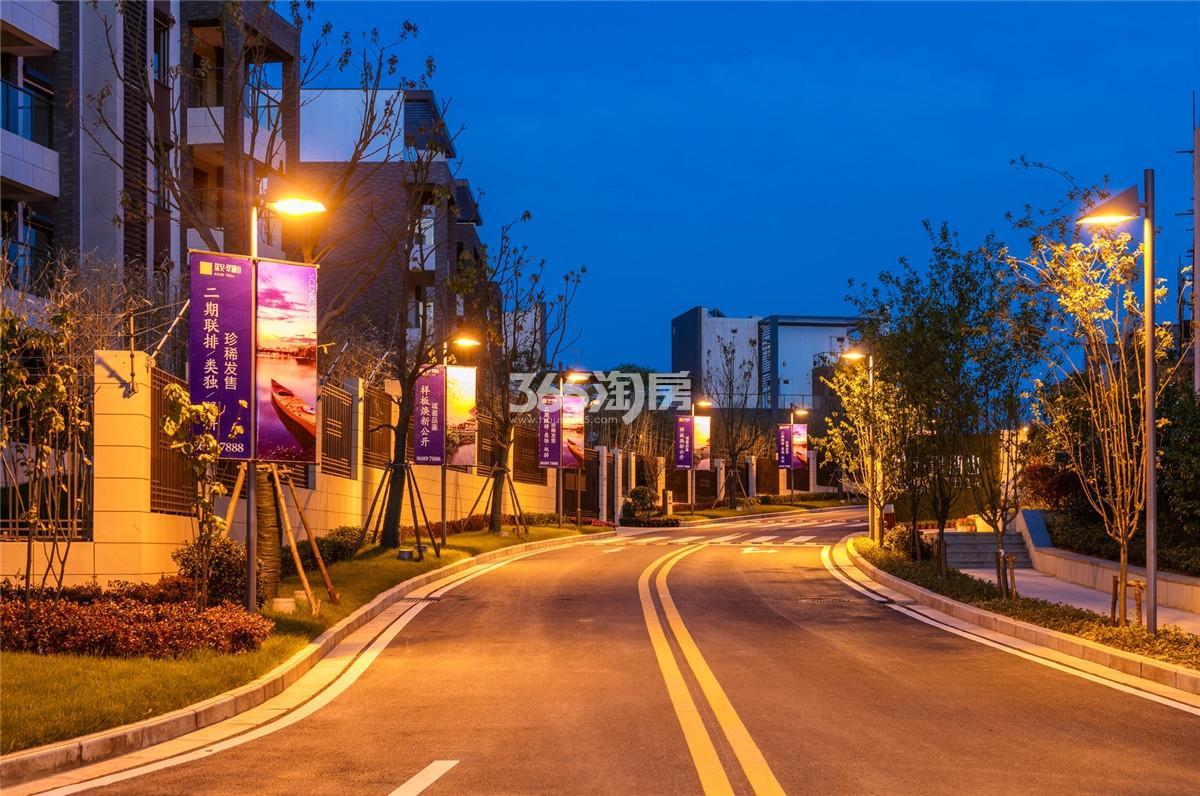 瑞安翠湖山小区道路夜景(9.10)