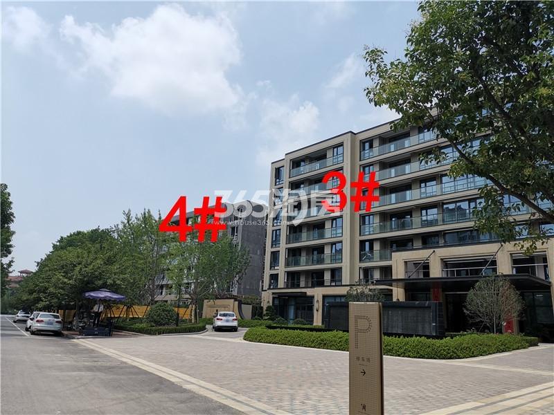 蓝城蘭园在建3、4#楼实景图(7.26)