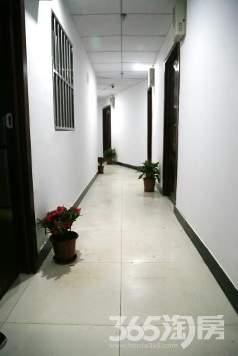 玄武区孝陵卫盛航青年公寓租房