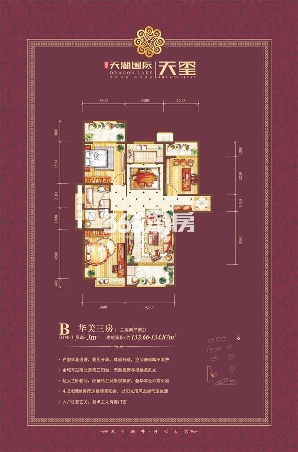 天湖国际户型图B1-3