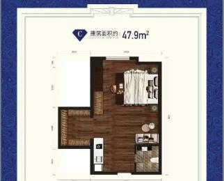 可以入学的公寓 滨湖凡高 双地铁 金融核心板块 不限购