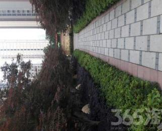 天慧紫辰阁4室2厅2卫143平米2013年产权房毛坯