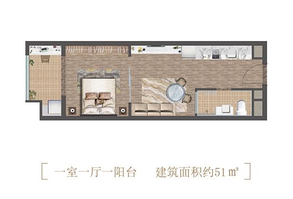 诚通龙蟠汇公寓51㎡户型图